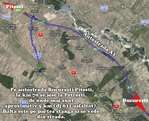 Harta spre Balta Brosteni