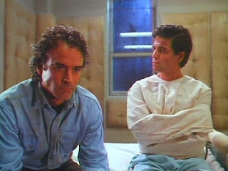 Chris Sarandon's character is not actually insane