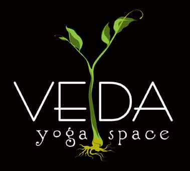 Veda yoga, yogi, health, awareness, buffalo, north buffalo, hertel ave, university of Buffalo, meditation, buffalo yoga, yoga classes, yoga space, yoga studio, buffalo, ny