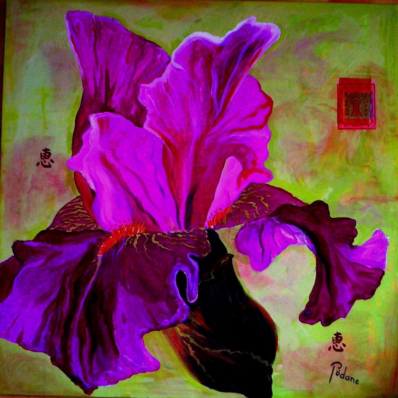 Les iris ont été pendant très longtemps un sujet de fascination