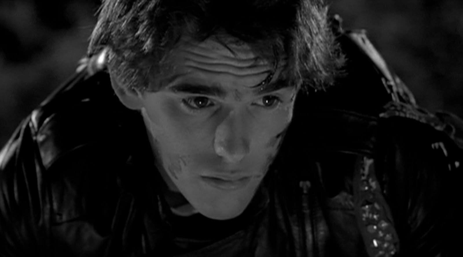 rumble fish essay rumble fish is a deeply poetic and personal essay on adolescence and
