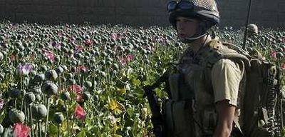 la proxima guerra afganistan opio cia