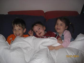 Three Cuddly Groggs