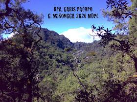 G. Mekongga 2620 mdpl