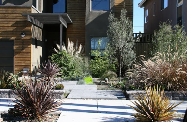 finderskeepers xeriscape idea