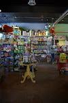 A HUGE selection of Melissa & Doug toys!