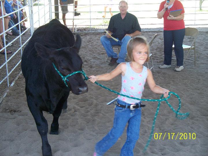 beef showmanship contest