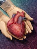 Clinicar: Seu coração em boas mãos