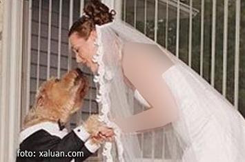 sangat-unikz.blogspot.com - Cewek Cantik Menikahi Anjingnya Karena Kesepian