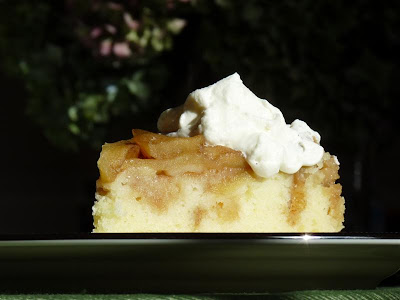 ButterYum Apple Upside Down Cake