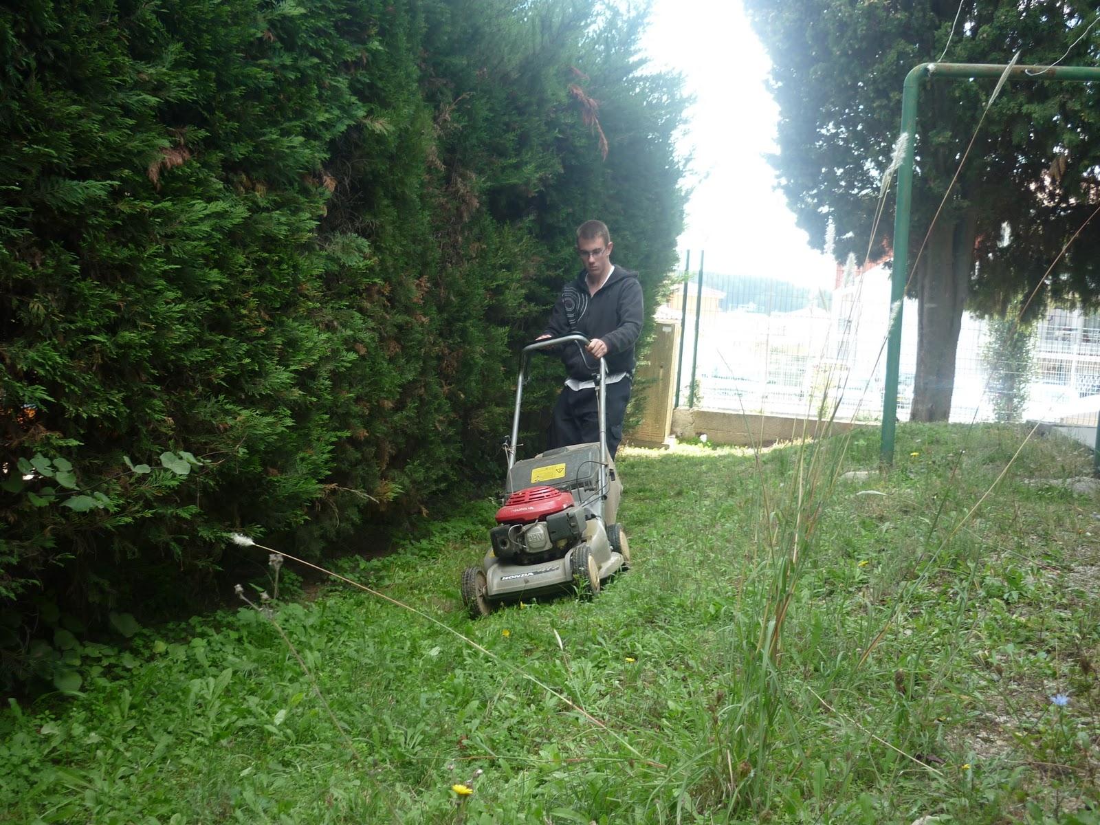 Le blog de l 39 i m pro la pin de atelier espace vert for Espace vert 51