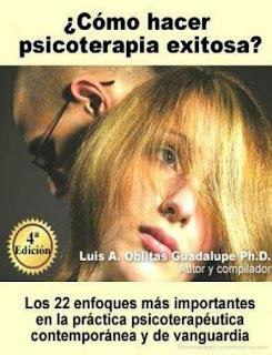 Cómo hacer psicoterapia exitosa: Los 22 enfoques más importantes en la práctica psicoterapéutica contemporánea y de vanguardia