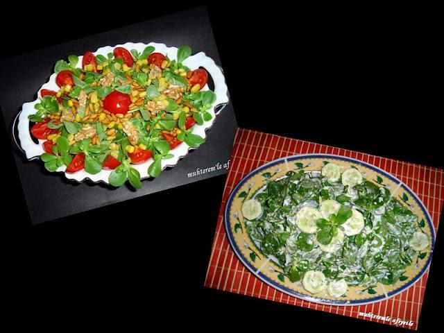 semizotu yemekleri