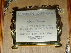PREMIO CIUDAD DE ROJAS