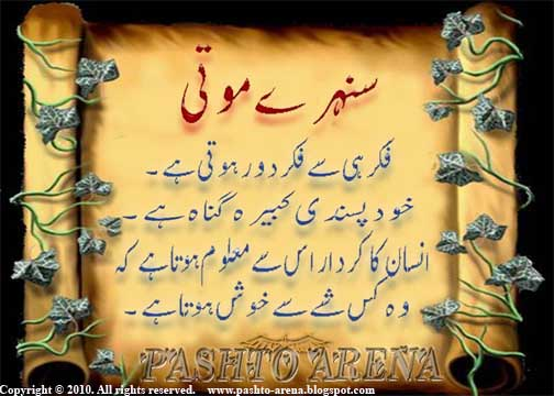 line qoutation n nice pixs ~ Best and Nice Pashto Urdu Poetry sms