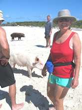 A Day at Pigs Beach