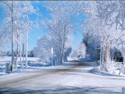 La Belleza de la Nieve