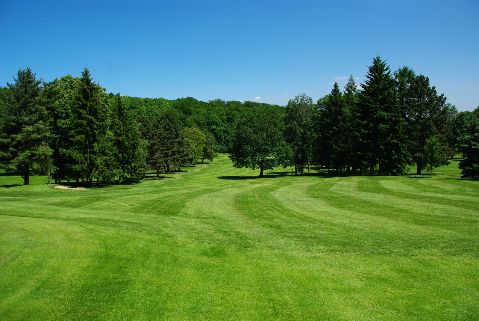 wiesbadener golfclub