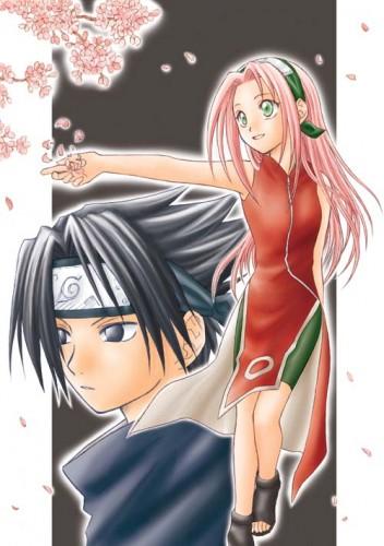 Sakura su gran amor