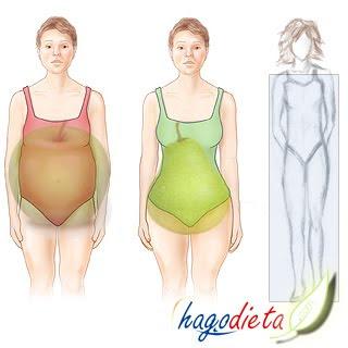 Dieta segun tu cuerpo