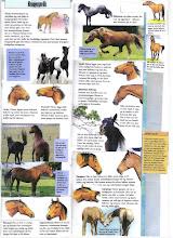 Hestens kroppspråk