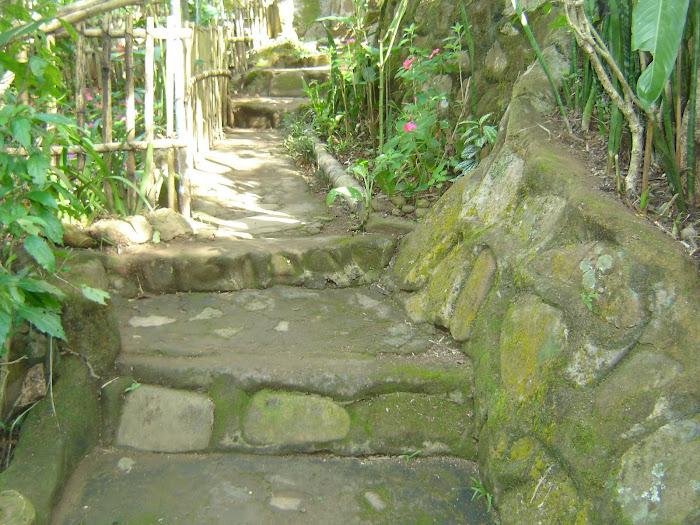 os degraus de pedra