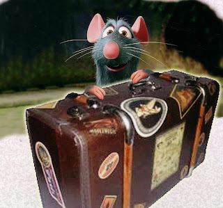 ratinho com as mãos sobre a mala