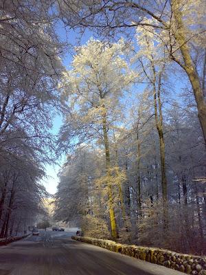 Hvit jul i Larvik