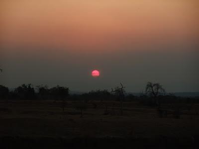 Vakker afrikansk solnedgangen i Mikumi nasjonalpark i Tanzania