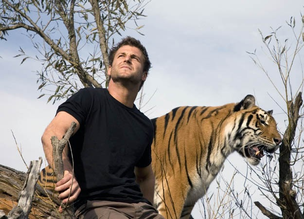 Bob Out: Hump Day Hunk(Dave Salmoni) Zoologist With Tiger