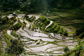 Banaue Rice Terraces: How To Get There