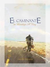 EL CAMINANTE - Ernesto Valencia.