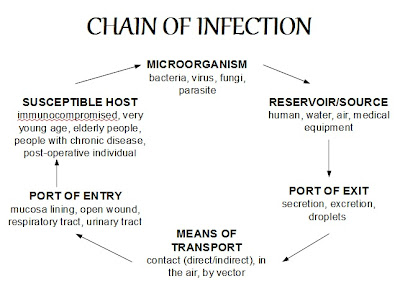 the australian infection control guidelines 2010