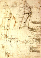 from DaVinci's notebooks