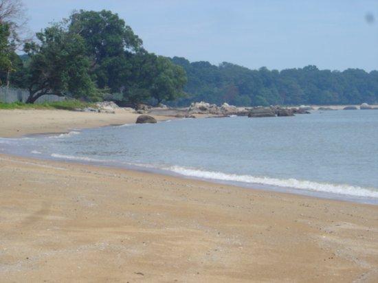 Tanjung Pedara