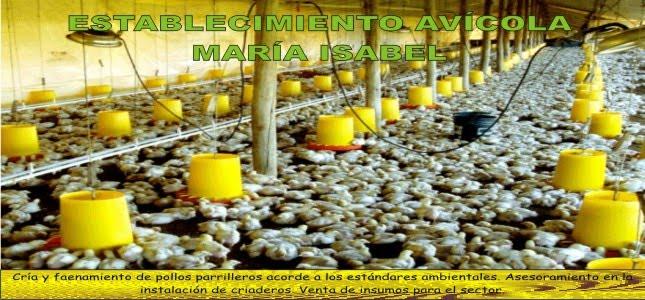 Establecimiento Avícola MARÍA ISABEL