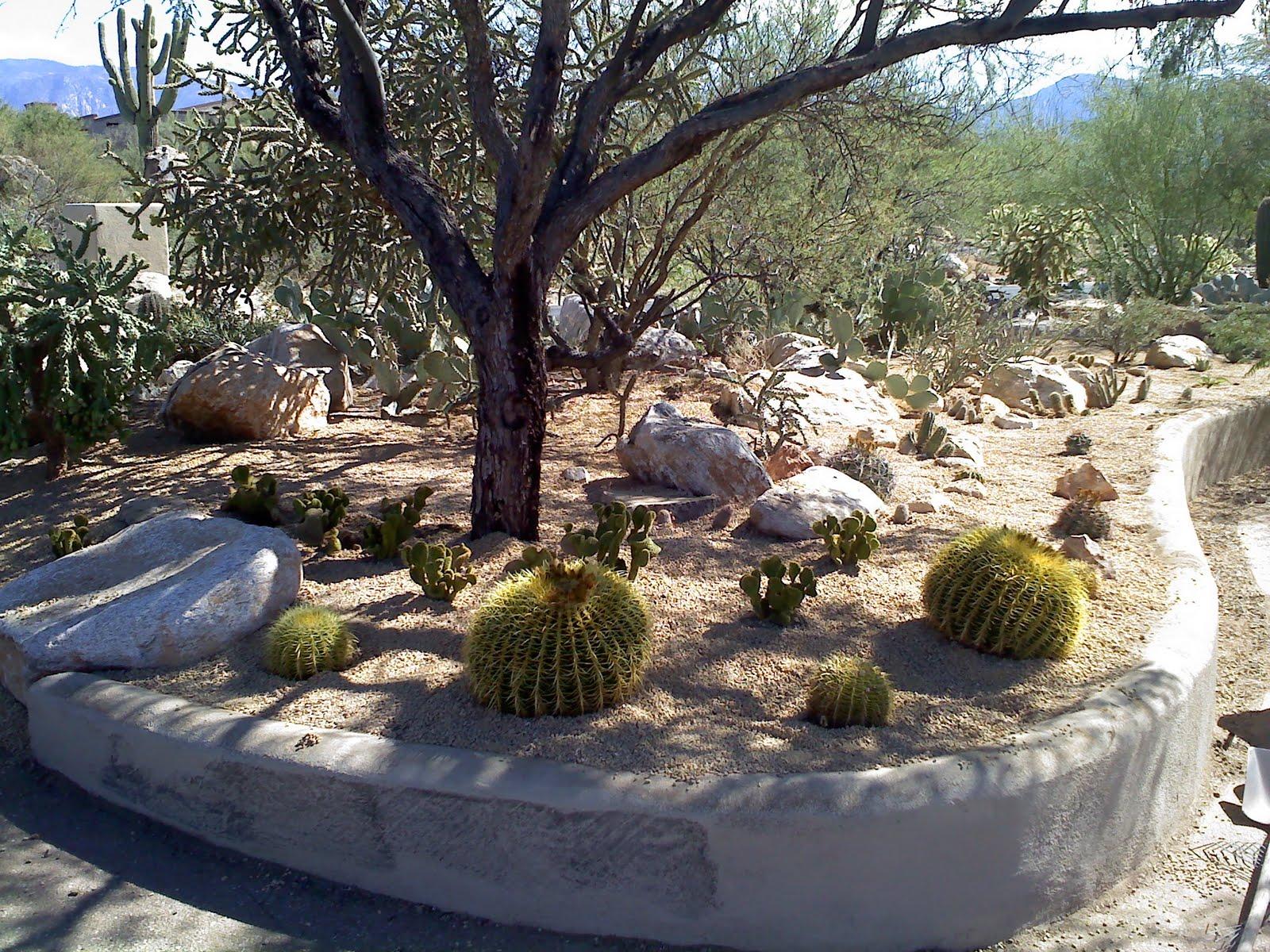 Tucson quality landscaping tucson quality gravel for Landscaping rocks tucson