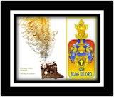 Premio Al Blog de Oro