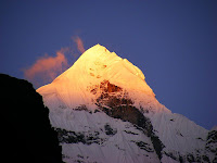 Neelkanth at dawn, by Alokprasad at Wikimedia Commons - released under Creative Commons Attribution 3.0 Unported Licence