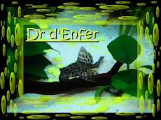 DR DENFER