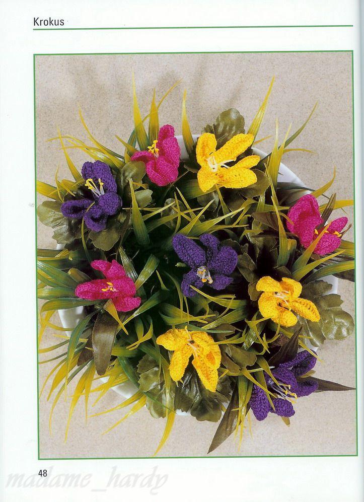 [flores+18.jpg]