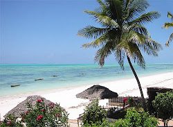 "The beautiful island in Africa ""Zanzibar"""