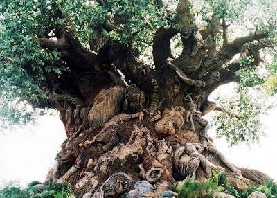 ต้นไม้แห่งชีวิต แปลกดี