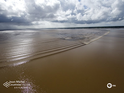 ปรากฏการณ์ธรรมชาติ คลื่น แห่ง แม่น้ำอเมซอน