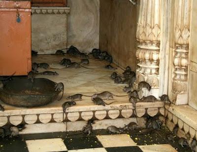 วิหารแปลก ใน อินเดีย