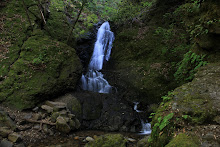 Basin Falls