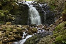 Upper Falls (Myrtyl Falls)