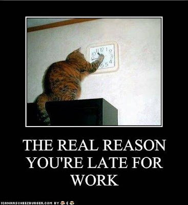 The Real Reason You're Late For Work!
