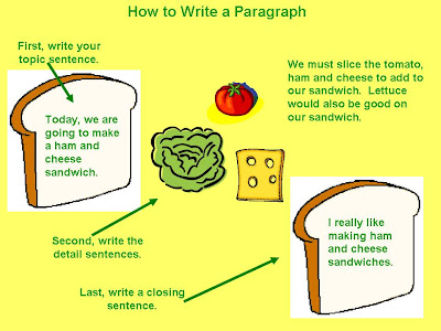 How to write paragraphs in an essay