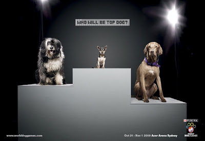 .com and Purina Dog food, hitchhiking off the Olympics - larger size